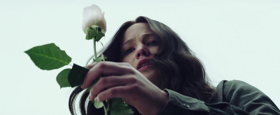 mockingjay-katniss-everdeen-roses